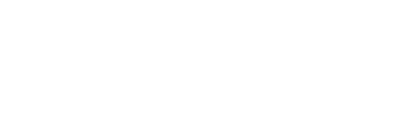 Project Management, Project Development, Infrastructure Specialists
